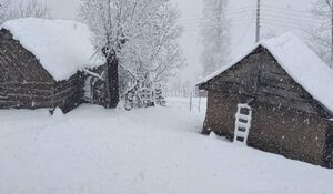فیلم| بارش برف در ارتفاعات گیلان