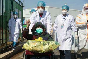 سازمان جهانی بهداشت زمان انتشار گزارش منشأ کرونا در چین را اعلام کرد
