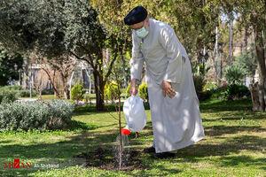 عکس/ کاشت یک اصله نهال میوه توسط رئیس قوه قضاییه