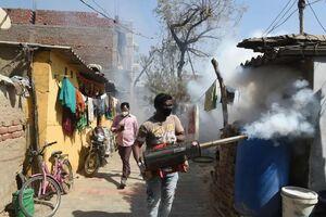 عکس/ ضدعفونی علیه ویروس آنفلوآنزای پرندگان