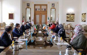 عکس/ دیدار وزیران امور خارجه ایران و ایرلند