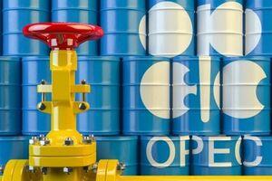 غافلگیری بازار از تصمیم اوپک پلاسیها/قیمت سبد نفتی اوپک افزایش یافت - کراپشده