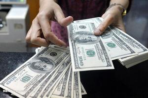 فیلم/ صف فروش دلار در میدان فردوسی