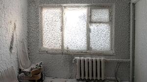یخبندان به روایت تصویر