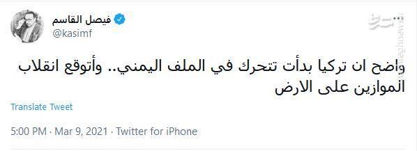 احتمال اتحاد ترکیه و عربستان در جنایت علیه مردم یمن / ماجراجویی اردوغان در یمن مانند ادلب و قرهباغ نخواهد بود