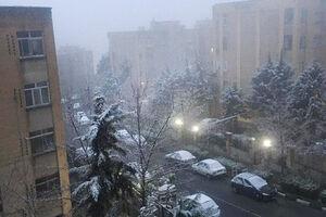 عکس/ آخرین برف قرن در تهران