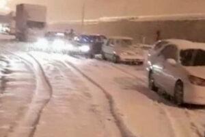 فیلم/ بارش شدید برف در پردیس تهران