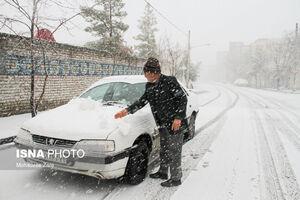 عکس/ هوای برفی مشهد و گلبهار