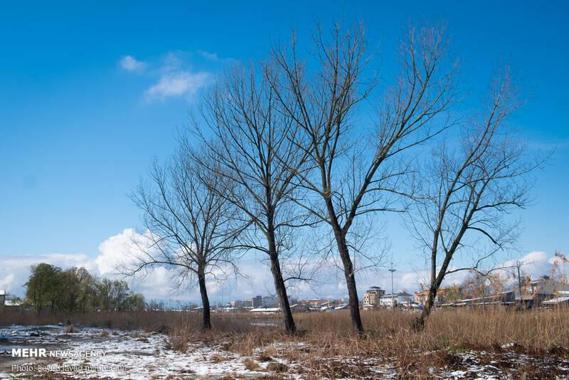 آسمان آبی رشت بعد از برف