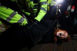 فیلم/ سگهای انگلیسی در مقابل معترضان