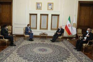دیدار نماینده ویژه نخستوزیر پاکستان با ظریف