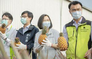 بی زحمت آناناسهای ما رو هم آزاد کنید!