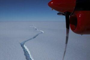 کشف موجودات دریایی که 50 سال زیر یخ پنهان بودند - کراپشده
