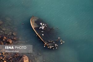 عکس/ گوشهای از بهشت ایران