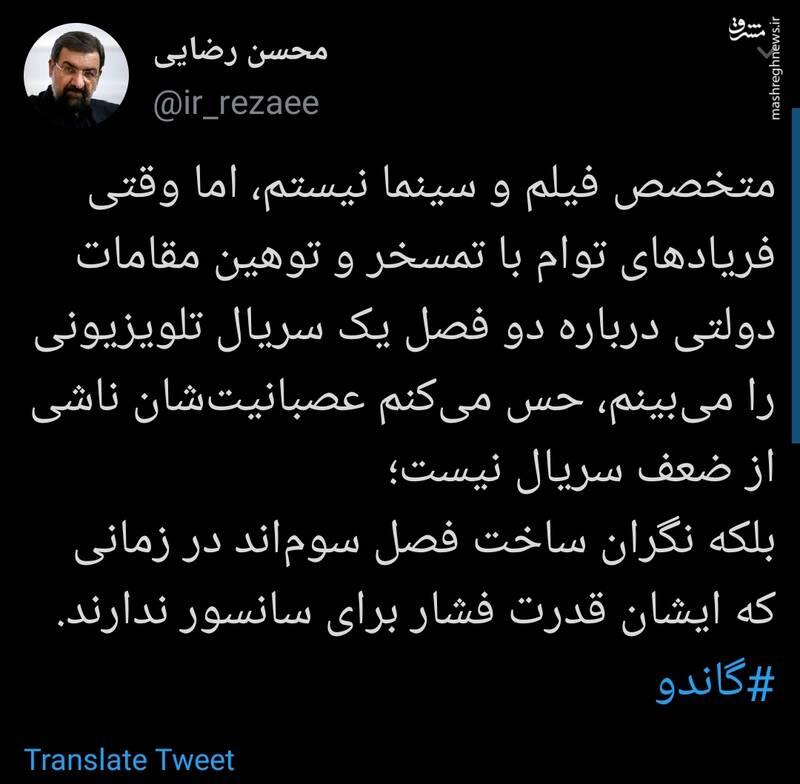 روایت محسن رضایی از چرایی توهین دولتیها به گاندو