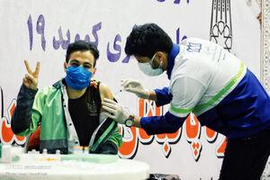 عکس/ آغاز واکسیناسیون پاکبانها در همدان