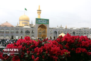 عکس/ حال و هوای مشهد مقدس در ایام نوروز