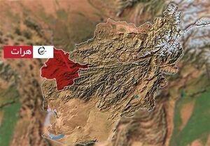 ۶ کشته در درگیریهای هرات در غرب افغانستان