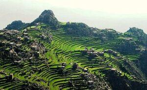 عکس/ طبیعت زیبای یمن