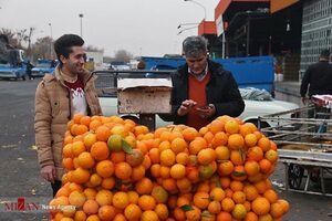 پشت پرده حضور دلالها در میدان مرکزی میوه و تره بار