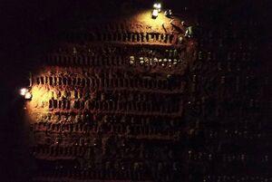 عکس/ دفن شبانه اجساد قربانیان کرونا