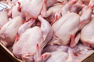 ۷ هزار و ۱۴۲ تن گوشت مرغ در بازار عرضه شد