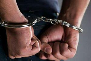 از دستگیری سارقان بیتالمال تا متخلفان سایبری