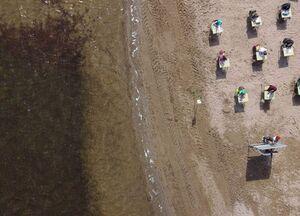 عکس/ برپایی کلاس درس در ساحل دریا