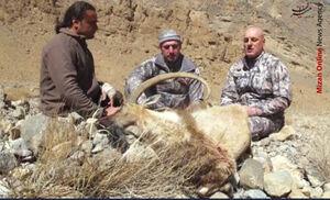 جولان شکارچی خارجی در قرقهای اختصاصی یزد +فیلم