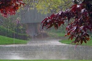 بارش های بهاری در آسمان کشور /وضعیت جوی پایتخت