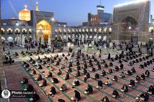 عکس/ قرائت قرآن با رعایت نکات بهداشتی در حرم رضوی
