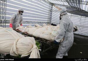 آمار جانباختگان روزانه کرونا در تهران بیش از ۱۳۰ نفر است