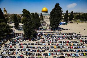 عکس/ اقامه نماز جماعت در مسجد الاقصی