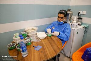 عکس/ سفره افطار مدافعان سلامت
