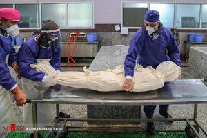آیا در تهران سردخانههای سیار راه اندازی میشود؟