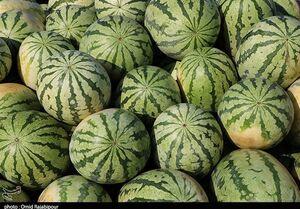 ثبت قیمتهای عجیب برای هندوانه