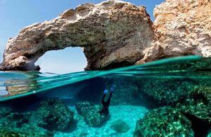 عکس/ غواصی برای عکاسی از مرجانها