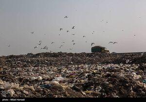 عکس/ دپوی زباله درمجاورت تالاب شادگان