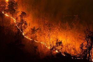 ارتباط میان دود آتشسوزی با اگزما پوست