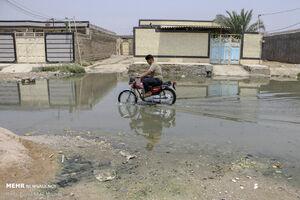 عکس/ گلدشت در محاصره فاضلاب