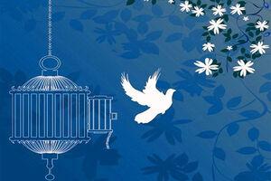 گلریزان آزادی ۳۵ کودک زندانی جرائم غیرعمد+ فیلم