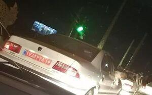 سگ گردانی با خودروی پلاک دولتی