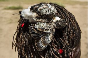 عکس/ روش عجیب شکار پرنده