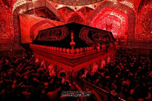 عکس/ احیای شب قدر در حرم حضرت علی علیه السلام