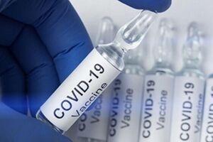 نیاز شدید سازمان جهانی بهداشت به پول برای واکسیناسیون - کراپشده