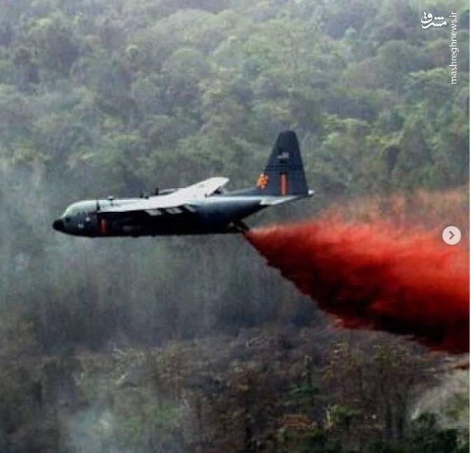 جنایت آمریکا در ویتنام با عامل نارنجی+ تصاویر
