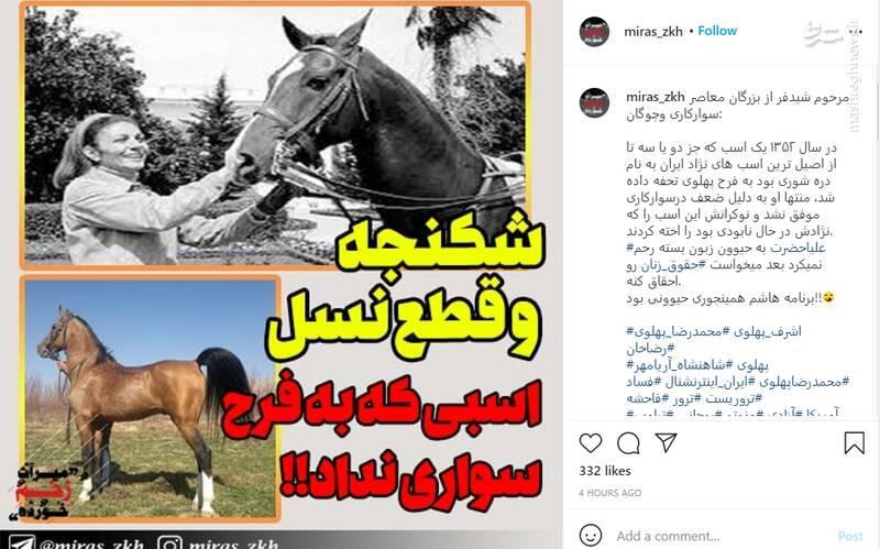 ماجرای شکنجه و قطع نسل اسبی که به فرح سواری نداد!