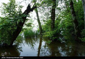 دریاچه ارواح در ایران+ تصاویر