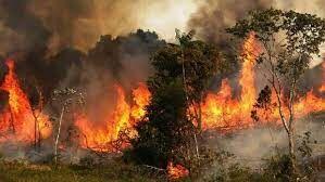 آتش سوزی امروز در صنایع نظامی اسرائیل+ فیلم