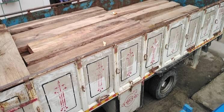 جزئیات انهدام باند قاچاق چوب جنگلهای شمال/ دستگیری ۳ نیروی اداره منابع طبیعی